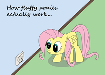 How fluffy ponies actually work by pdpie-d4pq6fc