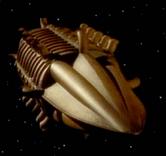 DNAShip