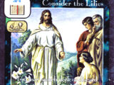 Consider the Lilies (TP)