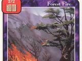 Forest Fire (Pr)