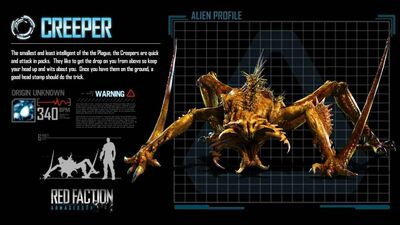51122 RFA Creeper Screen-2