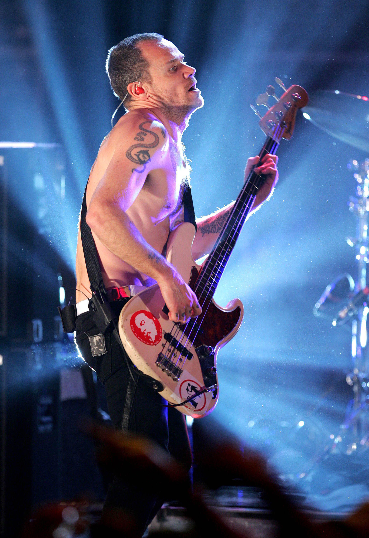 Flea Red Hot Chili Peppers Wiki Fandom