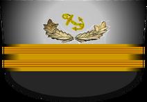 Csn cover mast
