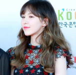 Wendy 170603 Dream Concert Red Carpet