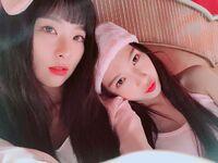 Seulgi & Joy IG Updates - 020318