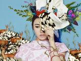 Wendy/Gallery