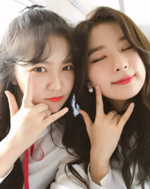 Yeri and Seulgi taking a selfie on a train