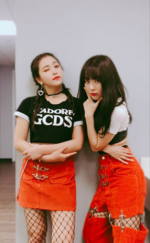 Seulgi and Yeri IG Update 180330
