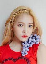 Yeri The Red Summer Album Preview