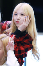 Wendy Ice Cream Cake Era