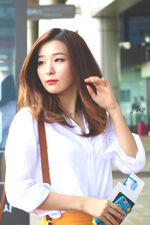 Seulgi at the Airport 2