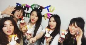 Red Velvet 1000 Days