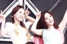Seulgi and Irene Happiness Era 3