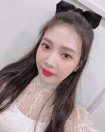 Joy IG Update - 122118 (5)