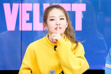 Seulgi Fan Meeting