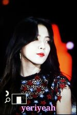 Yeri dream concert 5