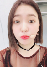 Yeri Twitter Update Nov 20, 2017 (2)
