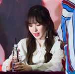 Wendy Rookie Fan Meeting