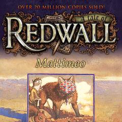 US Mattimeo 2010 Paperback