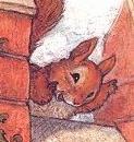 SamSquirrel