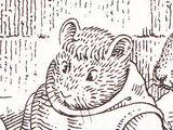 Furgle Woodvole the Hermit