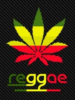35533reggae
