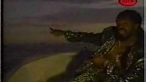TONY REBEL - SWEET JAMAICA video 1993