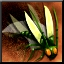 Beetle Swarm Power Icon
