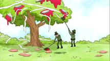 Sin Bromas episode - Número 288