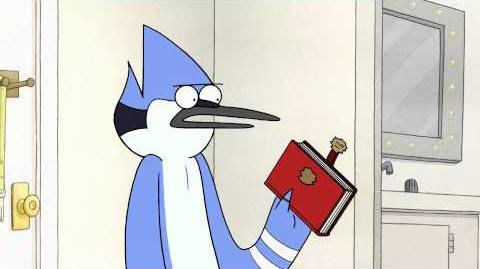 Regular Show - Diary (long preview)