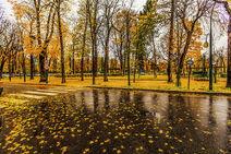 1024px-Paris raining autumn cityscape