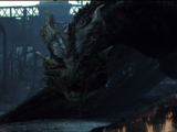 Male Dragon