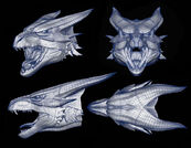 DragonBull