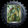 DragonTreasureReward2