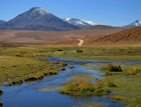 Altiplanos