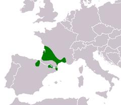 240px-Mapa Pelophylax grafi