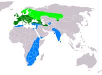 204px-Buteo buteo distribution map