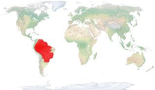 Mapa TapTer