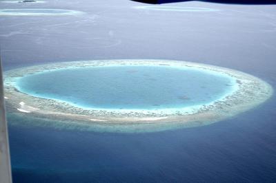 Arrecifes de coral 1