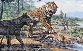 Lobo gigante 2