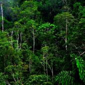 Cuadro portada habitats