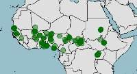 Distribucion-habitat-bichir-senegal-pez-dragon-africano-polypterus-senegalus