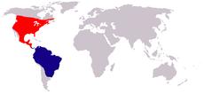 230px-Falkennachtschwalbe (chordeiles minor) world