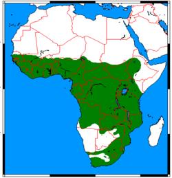 250px-Atilax paludinosus range map