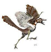 Archeoteryx