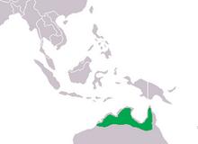 240px-Crocodylus johnsoni Distribution