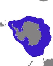 250px-Hydrurga leptonyx distribution