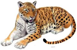 Tigre de Longdan