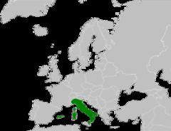 240px-Pseudepidalea balearica range Map