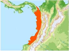 Caecilia nigricans